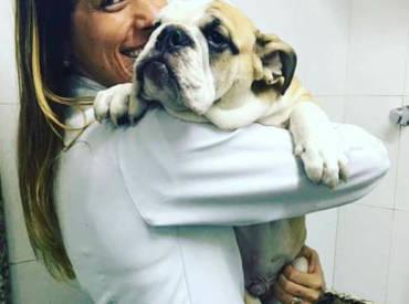 Nova integrante da família Pet Store