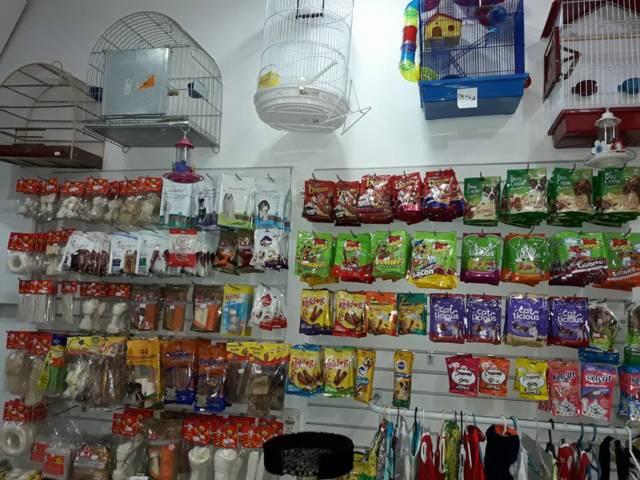 Pet Store_loja (7)