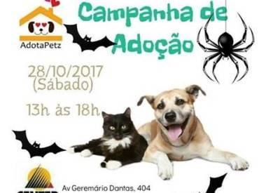 Center Shopping Rio realiza 4ª edição da campanha de adoção de cães e gatos